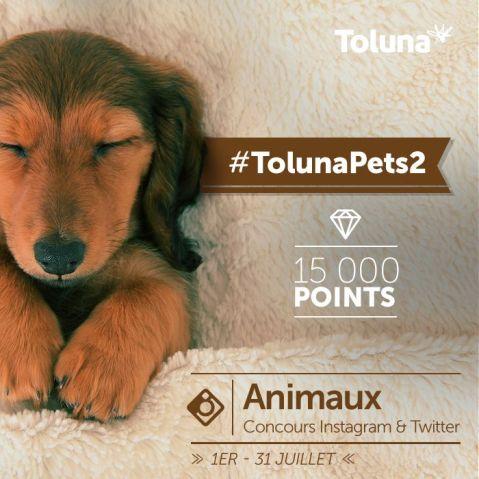 TolunaPets2_FR